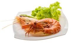 Boiled king prawns Stock Images