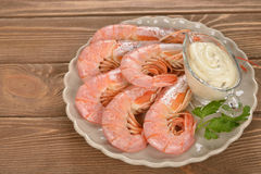 Boiled langoustines Stock Images