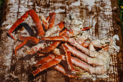 Boiled legs of a red king crab Stock Image