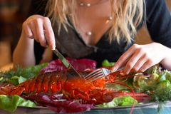 Boiled lobster Stock Photography