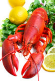 Boiled Lobster Stock Image