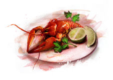 Boiled lobster on a plate with lemon and herbs sketch. Boiled lobster on a white plate with lemon and herbs sketch Stock Photo