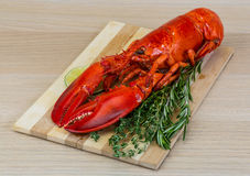 Boiled lobster. Served with thyme and rosemary Stock Photos