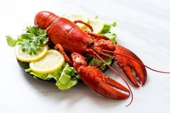 Boiled lobster with vegetable and lemon. Freshly boiled lobster with vegetable and lemon stock photo