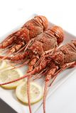 Boiled lobsters Royalty Free Stock Photo