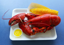 Boiled Maine lobster with corn Royalty Free Stock Photography