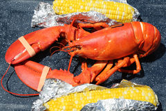 Boiled Maine lobster with corn Royalty Free Stock Photos