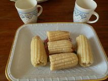 Boiled maize, with cups royalty free stock photo