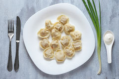 Boiled meat dumplings served with sour cream and chives. Traditional Russian pelmeni. Top view Stock Photography