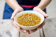 Boiled mung bean Royalty Free Stock Photos