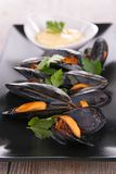 Boiled mussel Royalty Free Stock Images