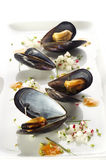 Boiled mussels Royalty Free Stock Photography