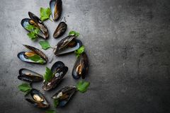 Boiled mussels at black Stock Photos