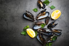 Boiled mussels at black Royalty Free Stock Photos