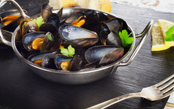 Boiled mussels in cooking dish on a dark background. Royalty Free Stock Photography