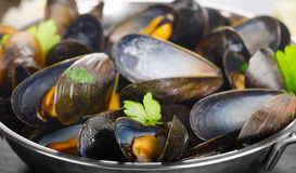 Boiled mussels in cooking dish Stock Photo
