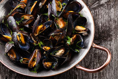 Boiled mussels. In copper cooking dish on dark wooden background close up royalty free stock photography