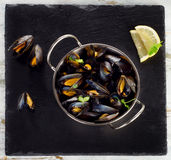 Boiled Mussels In Cooking Dish On Dark Background. Stock Images