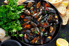 Boiled mussels in iron pan cooking dish. with herbs, butter, lime, parsley, garlic and fresh bread. Stock Image