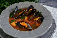 Boiled mussels soup on a grey plate. Closeup, orizontal stock images
