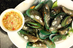 Boiled mussels on white dish. Stock Photos