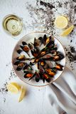 Boiled mussels and white wine on white stone table. Top view stock images
