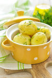 Boiled new potato Royalty Free Stock Images