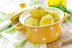 Boiled new potato Stock Photo