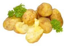Boiled New Potatoes Stock Photo