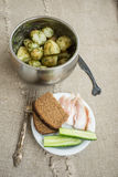 Boiled new potatoes with herbs. In a pan. Lard, rye bread and cucumber are on a plate Stock Image