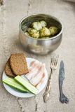 Boiled new potatoes with herbs. In a pan. Lard, rye bread and cucumber are on a plate Royalty Free Stock Photos