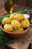Boiled new potatoes seasoned with dill Royalty Free Stock Photography