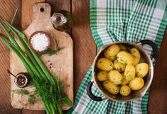 Boiled new potatoes seasoned with dill and butter. Stock Photography