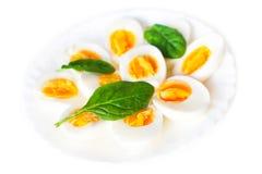 Boiled partiu ao meio ovos na placa decorada com o isolador das folhas dos espinafres Fotografia de Stock Royalty Free