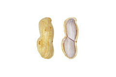 Boiled peanut Royalty Free Stock Photos