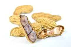 Boiled peanut on white background Stock Image