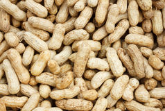Boiled peanuts for background Stock Photos