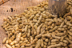 Boiled peanuts Stock Image