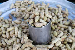 Boiled peanuts. In the market Royalty Free Stock Images