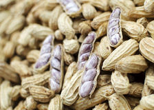 The boiled peanuts Royalty Free Stock Photography
