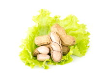 Boiled peanuts over green vegetable on white background Stock Images
