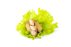 Boiled peanuts over green vegetable on white background Royalty Free Stock Photography
