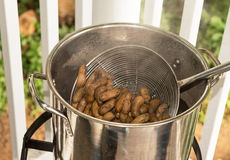 Boiled Peanuts. In salt water Royalty Free Stock Photo