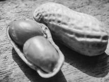 Boiled peanuts stock photos
