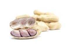 Boiled peanuts Royalty Free Stock Photos