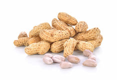 Boiled Peanuts on white background Royalty Free Stock Image