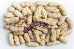 Boiled Peanuts. On white background Royalty Free Stock Photography