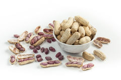 Boiled Peanuts. On white background Royalty Free Stock Photos