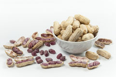 Boiled Peanuts. On white background Stock Photography