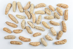 Boiled Peanuts. On white background Stock Photos